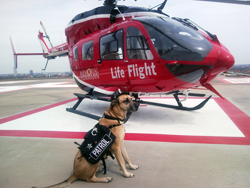 Rio and Life Flight
